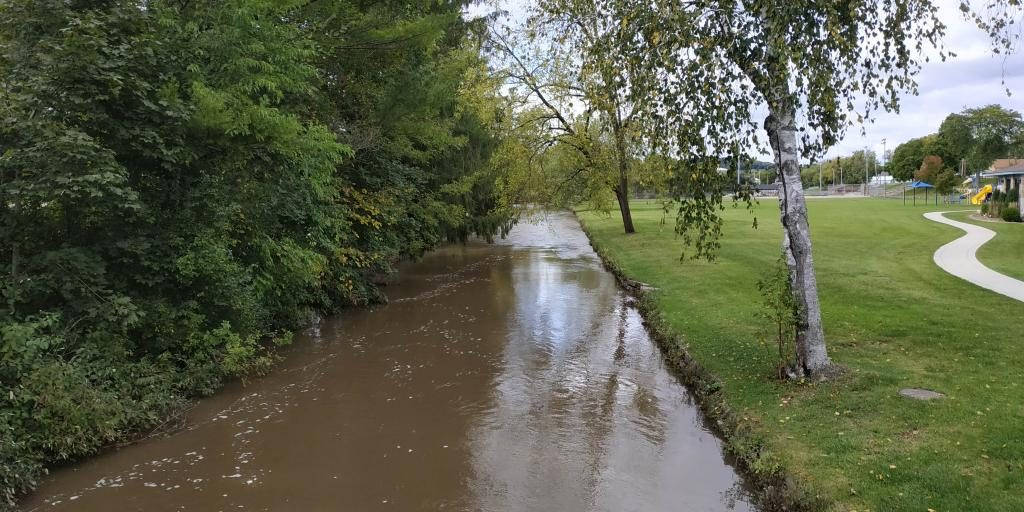 High waters in Spring Creek, Lodi