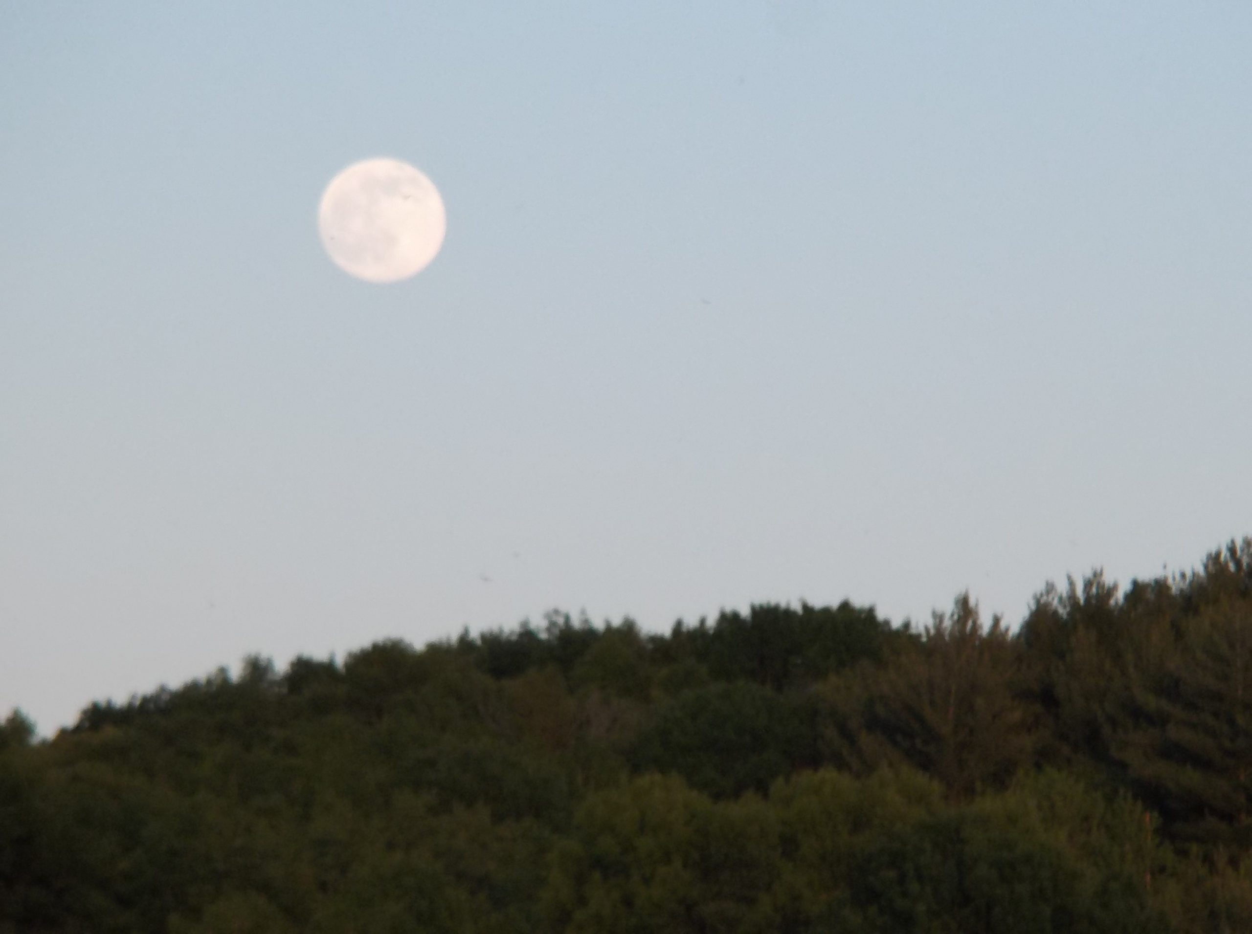 Moonrise on the Ice Age Trail